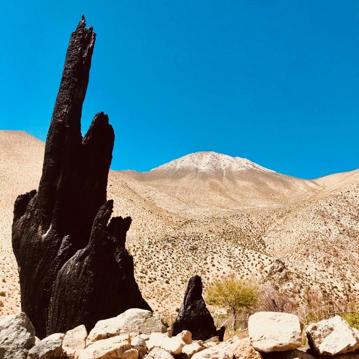 CHL: Valle de Elqui, Dedo 2