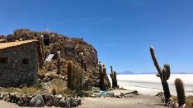 Salar de Uyuni, Isla