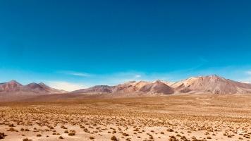 zurück in Chile
