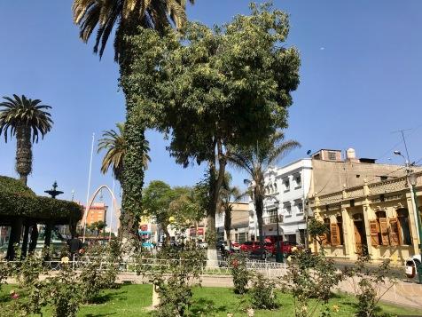 Tacna Plaza de Armas