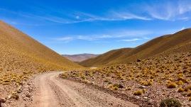 zwischen Antofalla und Antofagasta