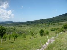 zwischen Drvar und Livno