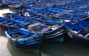 am Hafen von Essaouira
