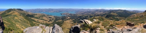 Banks Peninsula vom Purple Peak