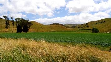 smooth Hills